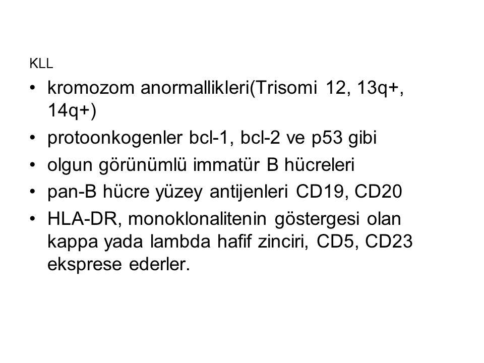 KLL kromozom anormallikleri(Trisomi 12, 13q+, 14q+) protoonkogenler bcl-1, bcl-2 ve p53 gibi olgun görünümlü immatür B hücreleri pan-B hücre yüzey ant