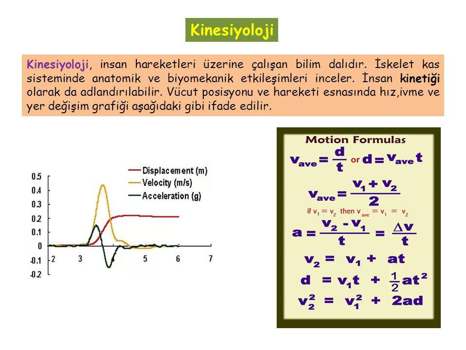 Kinesiyoloji, insan hareketleri üzerine çalışan bilim dalıdır.