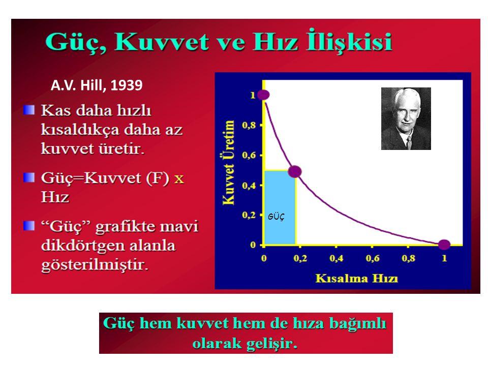 A.V. Hill, 1939 GÜÇ