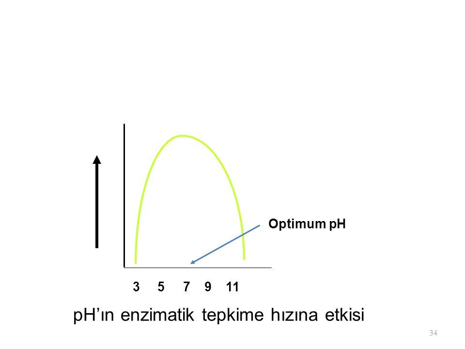 34 3 5 7 9 11 Optimum pH pH'ın enzimatik tepkime hızına etkisi