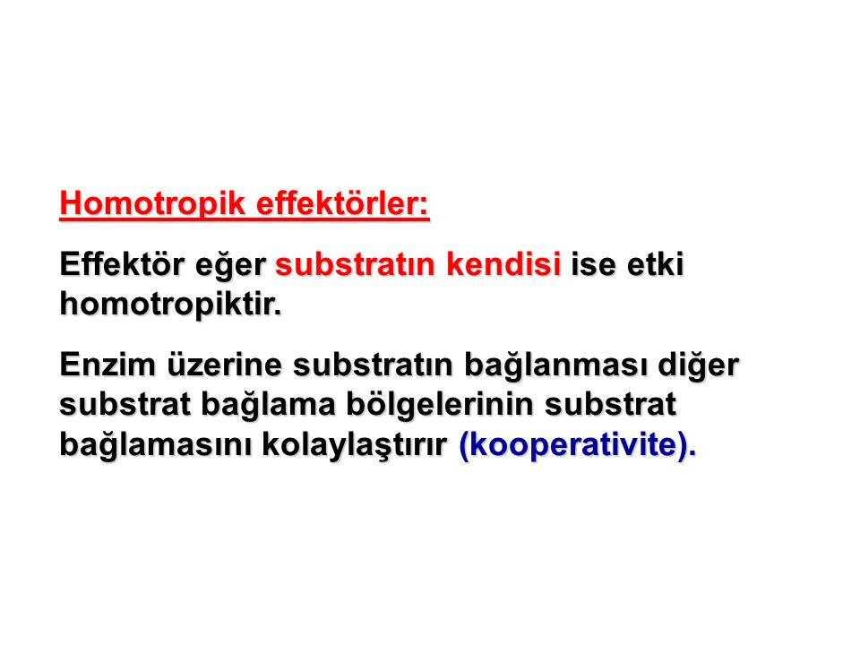 Homotropik effektörler: Effektör eğer substratın kendisi ise etki homotropiktir. Enzim üzerine substratın bağlanması diğer substrat bağlama bölgelerin