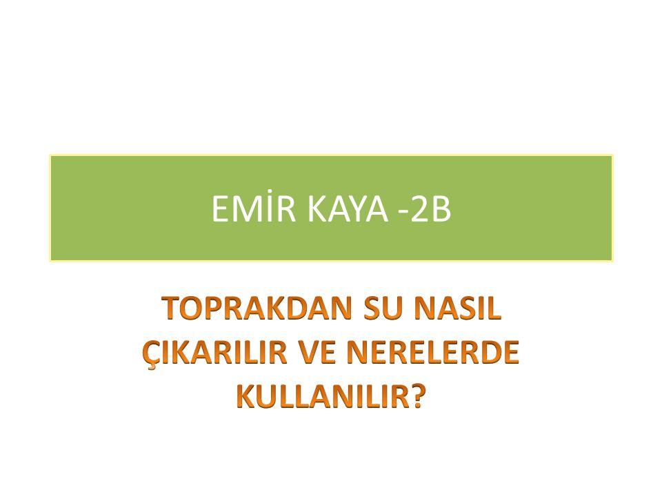 EMİR KAYA -2B