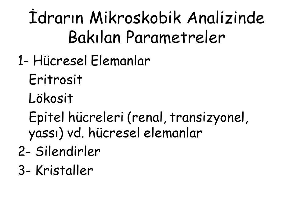 İdrarın Mikroskobik Analizinde Bakılan Parametreler 1- Hücresel Elemanlar Eritrosit Lökosit Epitel hücreleri (renal, transizyonel, yassı) vd.