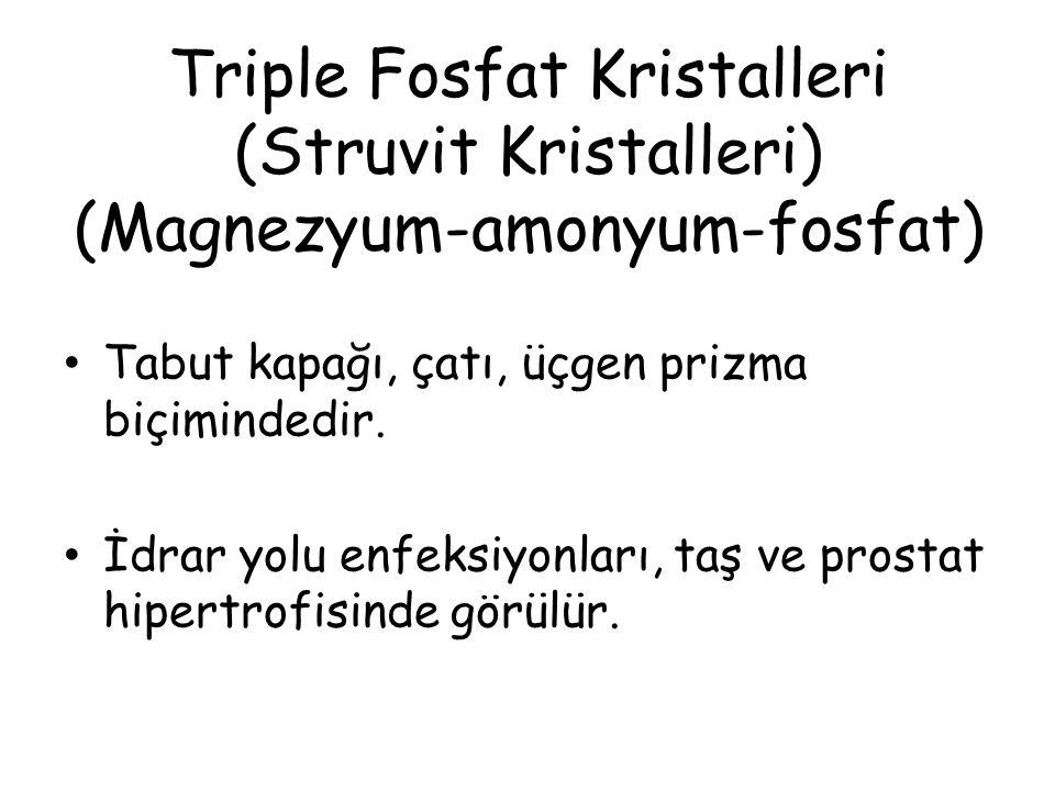 Triple Fosfat Kristalleri (Struvit Kristalleri) (Magnezyum-amonyum-fosfat) Tabut kapağı, çatı, üçgen prizma biçimindedir.
