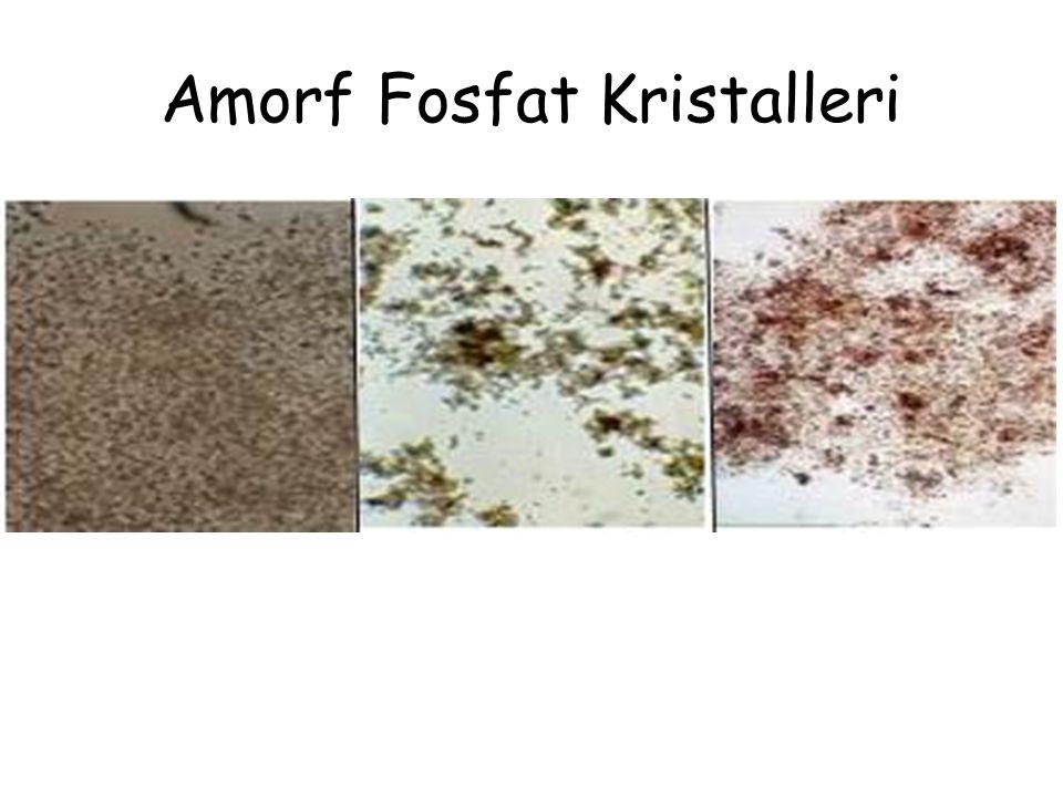 Amorf Fosfat Kristalleri