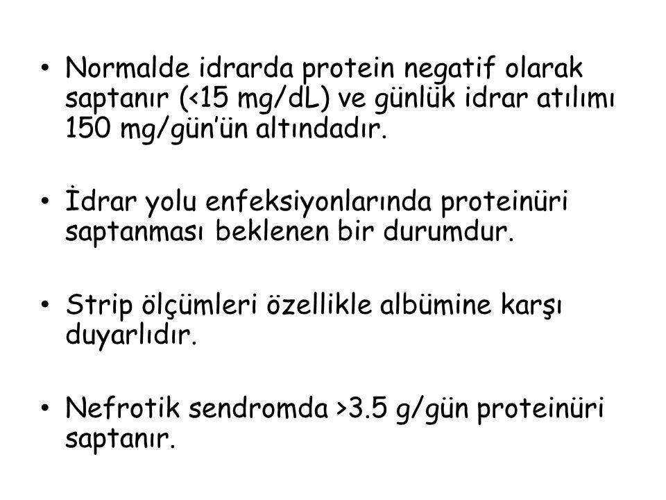 Normalde idrarda protein negatif olarak saptanır (<15 mg/dL) ve günlük idrar atılımı 150 mg/gün'ün altındadır. İdrar yolu enfeksiyonlarında proteinüri