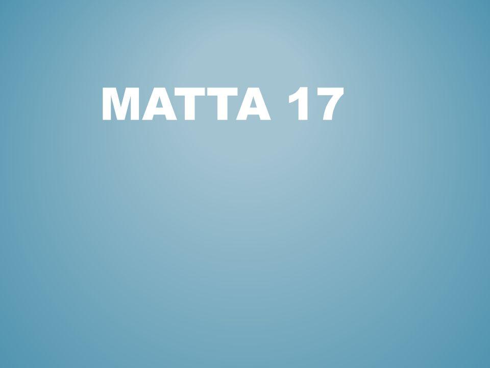 MATTA 17