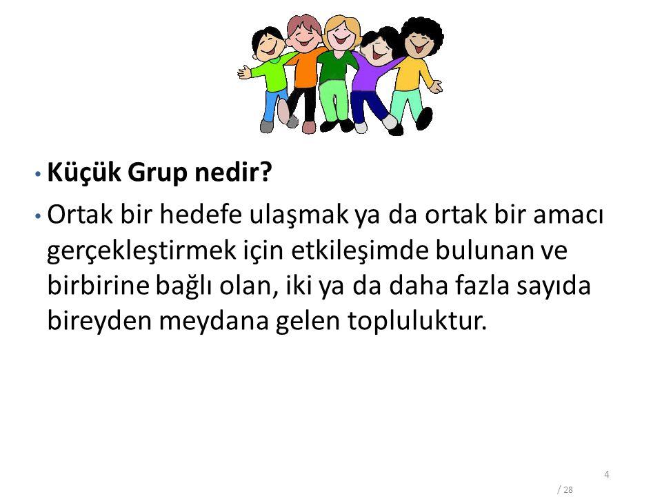 4 Grup Nedir. Küçük Grup nedir.