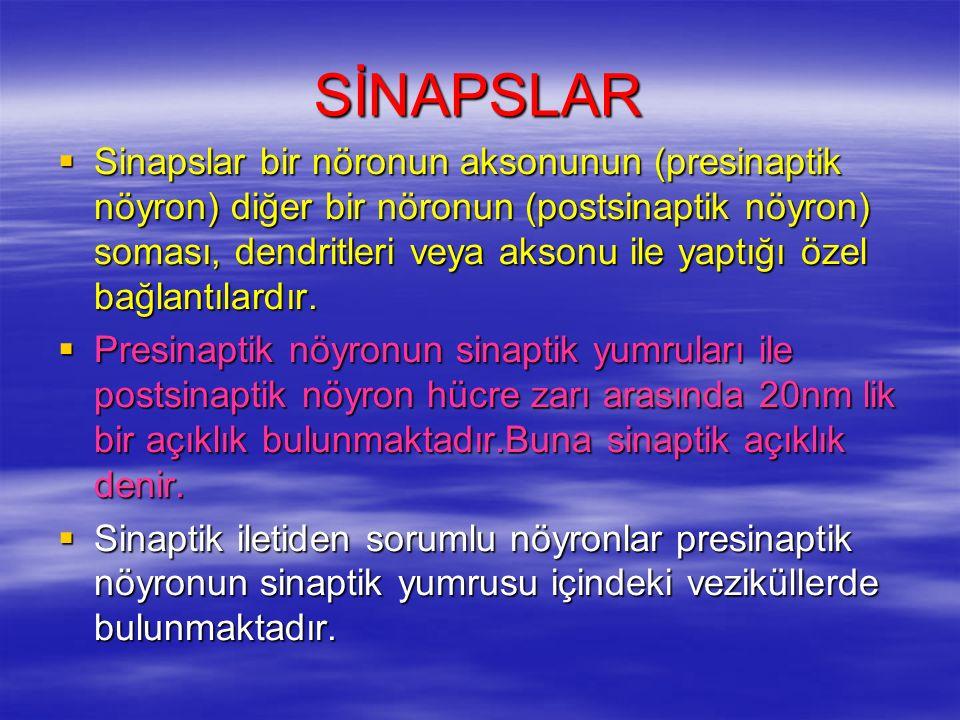 SİNAPSLAR  Sinapslar bir nöronun aksonunun (presinaptik nöyron) diğer bir nöronun (postsinaptik nöyron) soması, dendritleri veya aksonu ile yaptığı özel bağlantılardır.