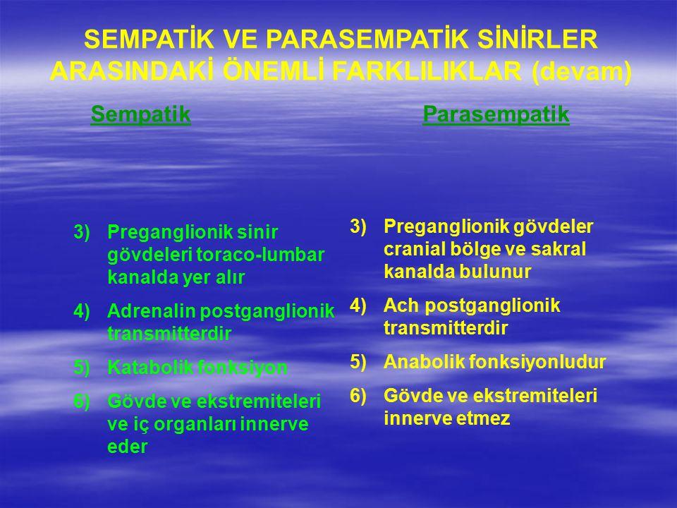 SEMPATİK VE PARASEMPATİK SİNİRLER ARASINDAKİ ÖNEMLİ FARKLILIKLAR (devam) Sempatik Parasempatik 3)Preganglionik sinir gövdeleri toraco-lumbar kanalda yer alır 4)Adrenalin postganglionik transmitterdir 5)Katabolik fonksiyon 6)Gövde ve ekstremiteleri ve iç organları innerve eder 3)Preganglionik gövdeler cranial bölge ve sakral kanalda bulunur 4)Ach postganglionik transmitterdir 5)Anabolik fonksiyonludur 6)Gövde ve ekstremiteleri innerve etmez