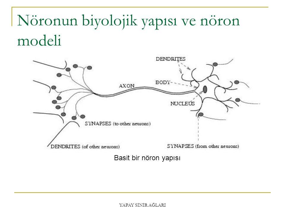 YAPAY SİNİR AĞLARI Nöronun biyolojik yapısı Biyolojik bir sinir hücresi; bir gövde, bir akson, çok sayıda sinir ucu (dendrit) ve akson ile diğer sinir hücresinin sinir ucu arasında kalan ince uzantılar (sinaps) olmak üzere dört bölümden oluşmaktadır.