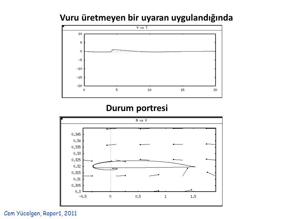 Vuru üretmeyen bir uyaran uygulandığında Durum portresi Cem Yücelgen, Rapor1, 2011