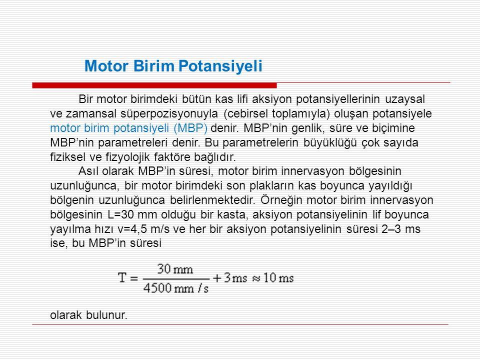 Bir motor birimdeki bütün kas lifi aksiyon potansiyellerinin uzaysal ve zamansal süperpozisyonuyla (cebirsel toplamıyla) oluşan potansiyele motor birim potansiyeli (MBP) denir.