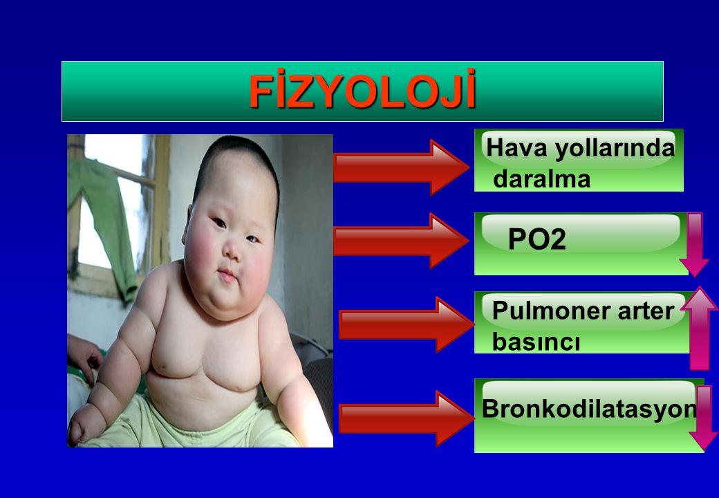 FİZYOLOJİ Hava yollarında daralma PO2 Pulmoner arter basıncı Bronkodilatasyon
