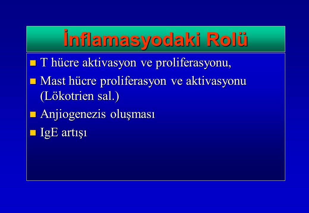 T hücre aktivasyon ve proliferasyonu, T hücre aktivasyon ve proliferasyonu, Mast hücre proliferasyon ve aktivasyonu (Lökotrien sal.) Mast hücre proliferasyon ve aktivasyonu (Lökotrien sal.) Anjiogenezis oluşması Anjiogenezis oluşması IgE artışı IgE artışı İnflamasyodaki Rolü