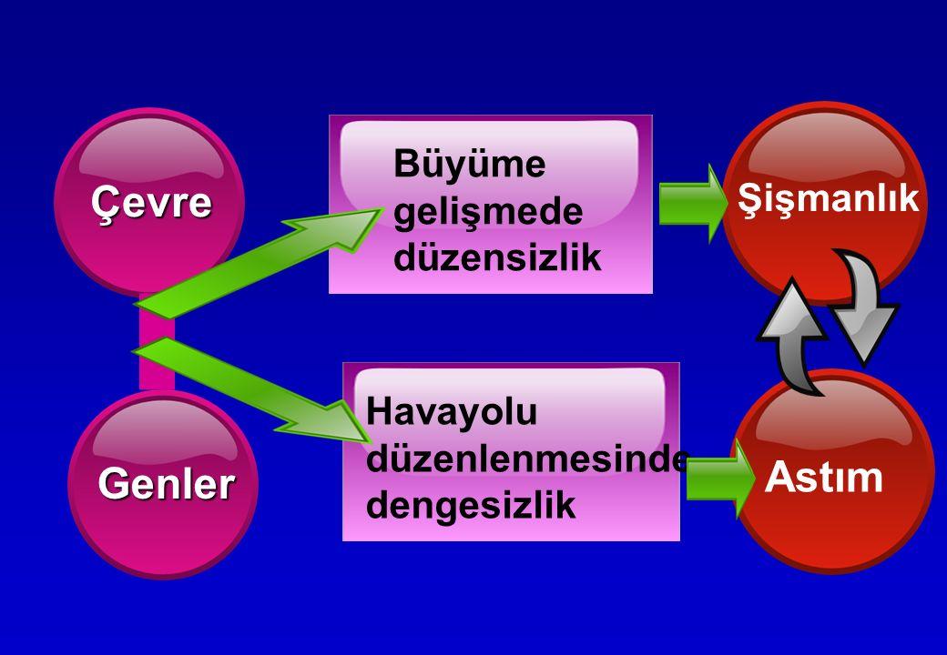 Yüksektir Yüksektir  Hipertrofik ve hiperplastik yağ hücreleri  Leptin direnci  Yüksek leptin hipotalamusa zararlı etkisi.