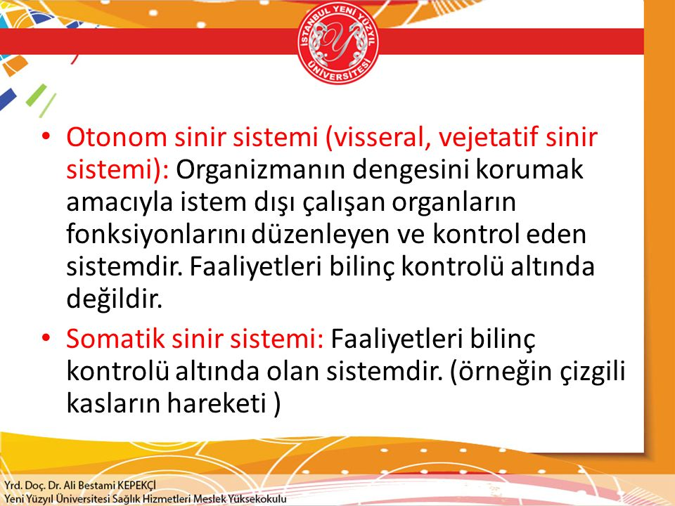 Otonom sinir sistemi (visseral, vejetatif sinir sistemi): Organizmanın dengesini korumak amacıyla istem dışı çalışan organların fonksiyonlarını düzenl