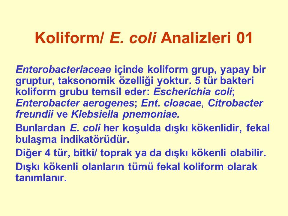 Koliform/ E. coli Analizleri 01 Enterobacteriaceae içinde koliform grup, yapay bir gruptur, taksonomik özelliği yoktur. 5 tür bakteri koliform grubu t