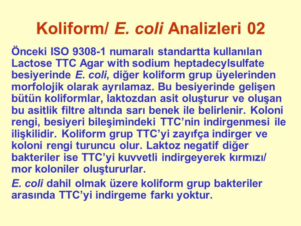 Koliform/ E. coli Analizleri 02 Önceki ISO 9308-1 numaralı standartta kullanılan Lactose TTC Agar with sodium heptadecylsulfate besiyerinde E. coli, d