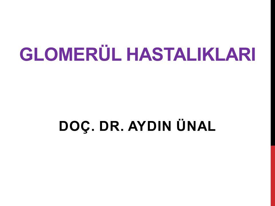 GLOMERÜL HASTALIKLARI DOÇ. DR. AYDIN ÜNAL