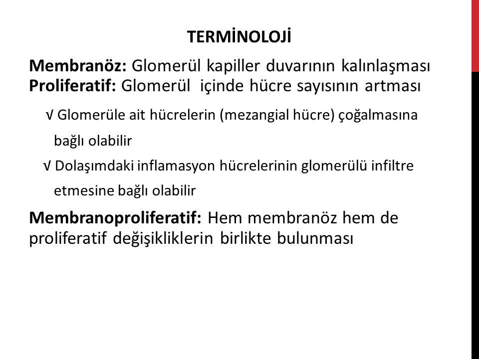 TERMİNOLOJİ Membranöz: Glomerül kapiller duvarının kalınlaşması Proliferatif: Glomerül içinde hücre sayısının artması √ Glomerüle ait hücrelerin (mezangial hücre) çoğalmasına bağlı olabilir √ Dolaşımdaki inflamasyon hücrelerinin glomerülü infiltre etmesine bağlı olabilir Membranoproliferatif: Hem membranöz hem de proliferatif değişikliklerin birlikte bulunması