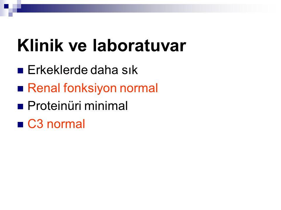 Klinik ve laboratuvar Erkeklerde daha sık Renal fonksiyon normal Proteinüri minimal C3 normal