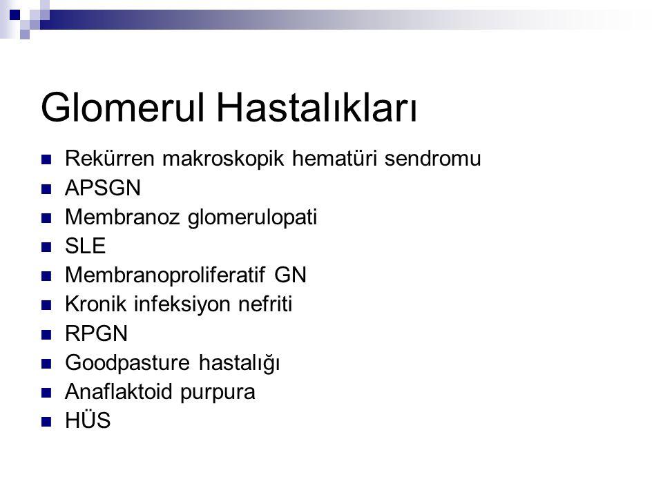 Glomerul Hastalıkları Rekürren makroskopik hematüri sendromu APSGN Membranoz glomerulopati SLE Membranoproliferatif GN Kronik infeksiyon nefriti RPGN Goodpasture hastalığı Anaflaktoid purpura HÜS