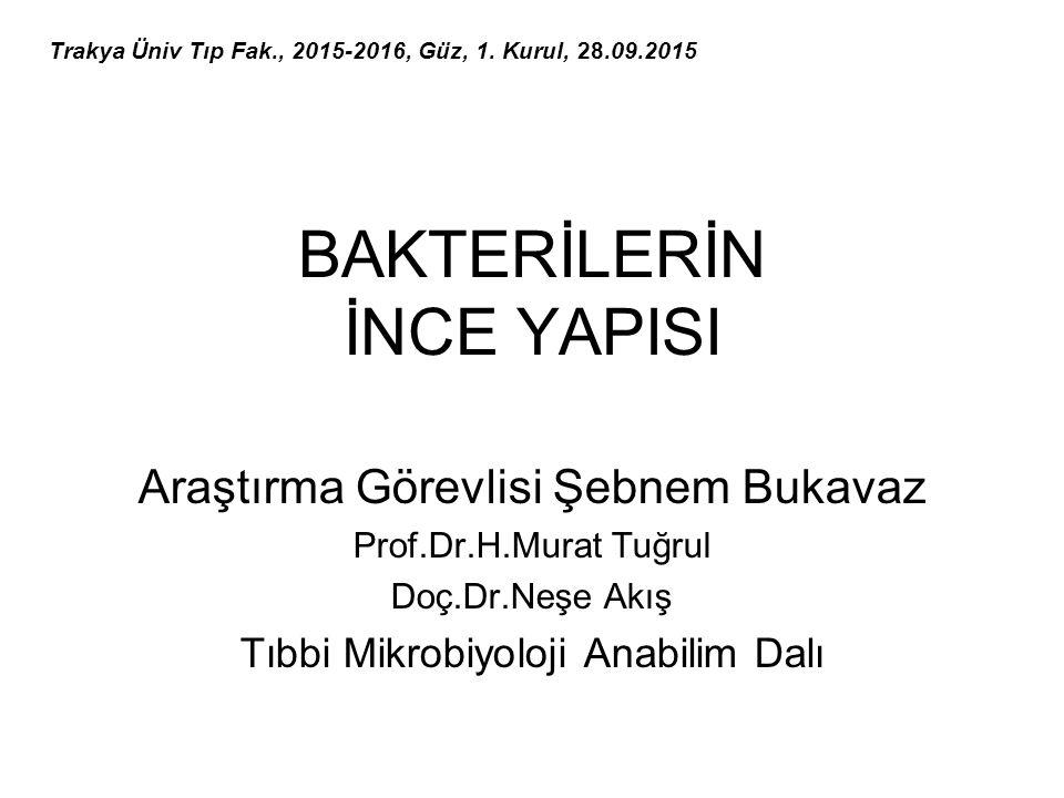 BAKTERİLERİN İNCE YAPISI Araştırma Görevlisi Şebnem Bukavaz Prof.Dr.H.Murat Tuğrul Doç.Dr.Neşe Akış Tıbbi Mikrobiyoloji Anabilim Dalı Trakya Üniv Tıp Fak., 2015-2016, Güz, 1.