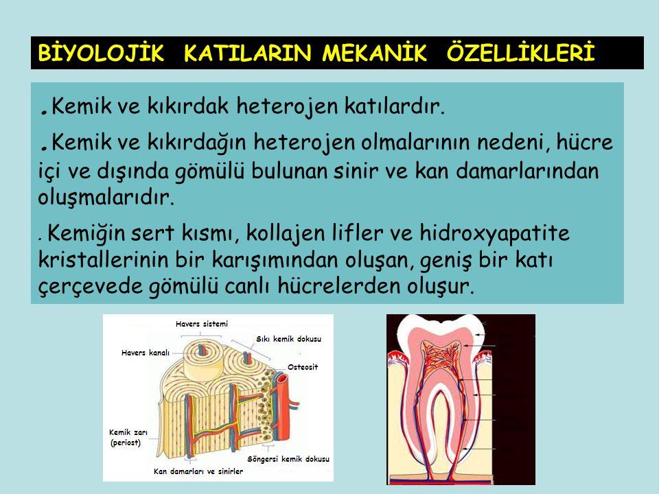 . Kemik ve kıkırdak heterojen katılardır.. Kemik ve kıkırdağın heterojen olmalarının nedeni, hücre içi ve dışında gömülü bulunan sinir ve kan damarlar