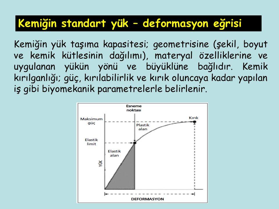 Kemiğin yük taşıma kapasitesi; geometrisine (şekil, boyut ve kemik kütlesinin dağılımı), materyal özelliklerine ve uygulanan yükün yönü ve büyüklüne b