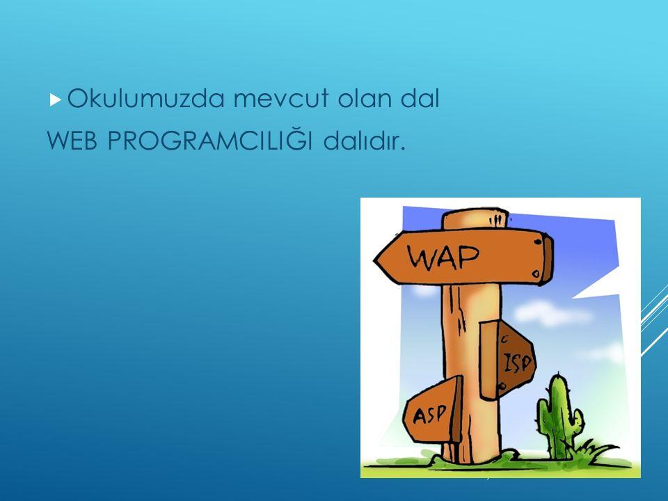  Okulumuzda mevcut olan dal WEB PROGRAMCILIĞI dalıdır.