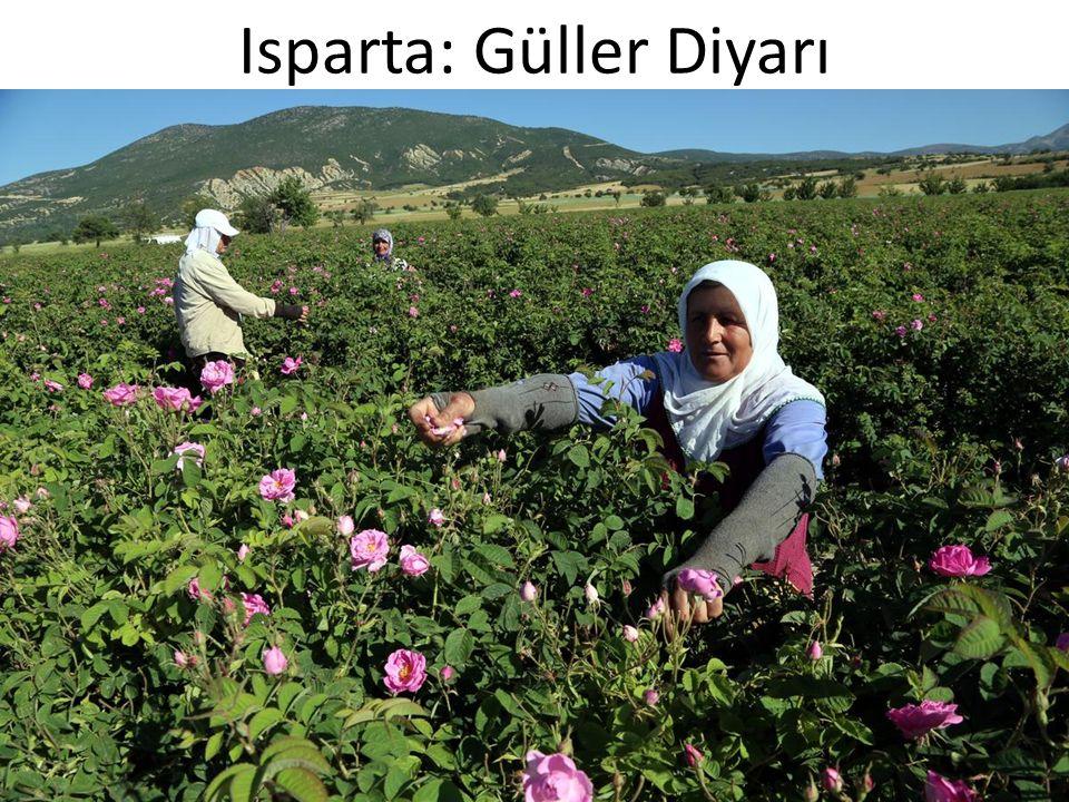 Isparta: Güller Diyarı