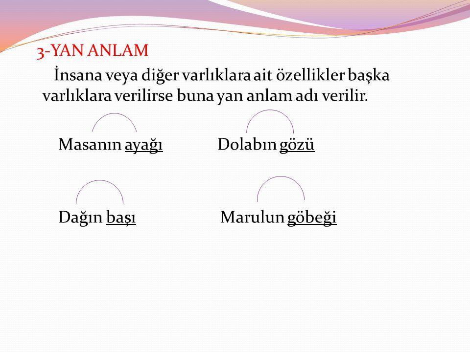 3-YAN ANLAM İnsana veya diğer varlıklara ait özellikler başka varlıklara verilirse buna yan anlam adı verilir.