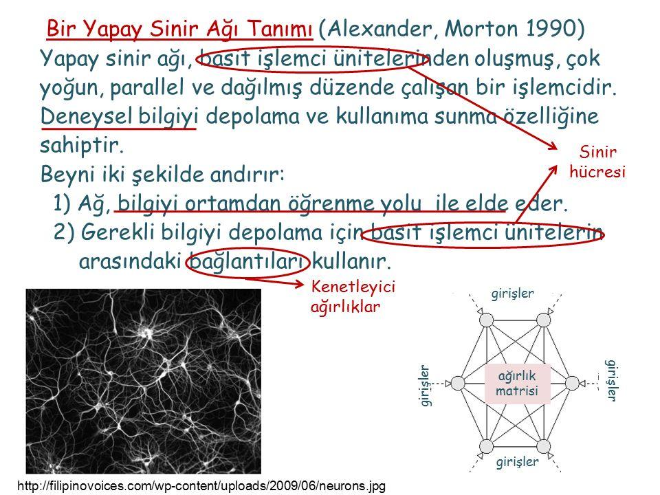 Bir Yapay Sinir Ağı Tanımı (Alexander, Morton 1990) Yapay sinir ağı, basit işlemci ünitelerinden oluşmuş, çok yoğun, parallel ve dağılmış düzende çalışan bir işlemcidir.