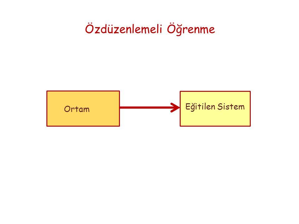 Ortam Özdüzenlemeli Öğrenme Eğitilen Sistem