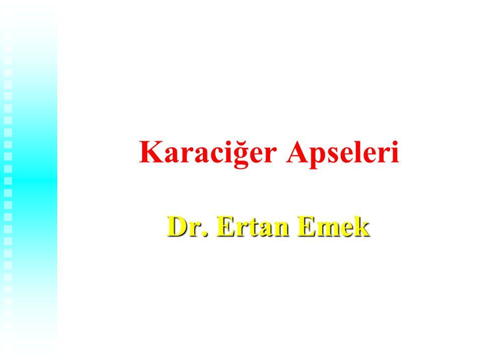 1 Karaciğer Apseleri Dr. Ertan Emek