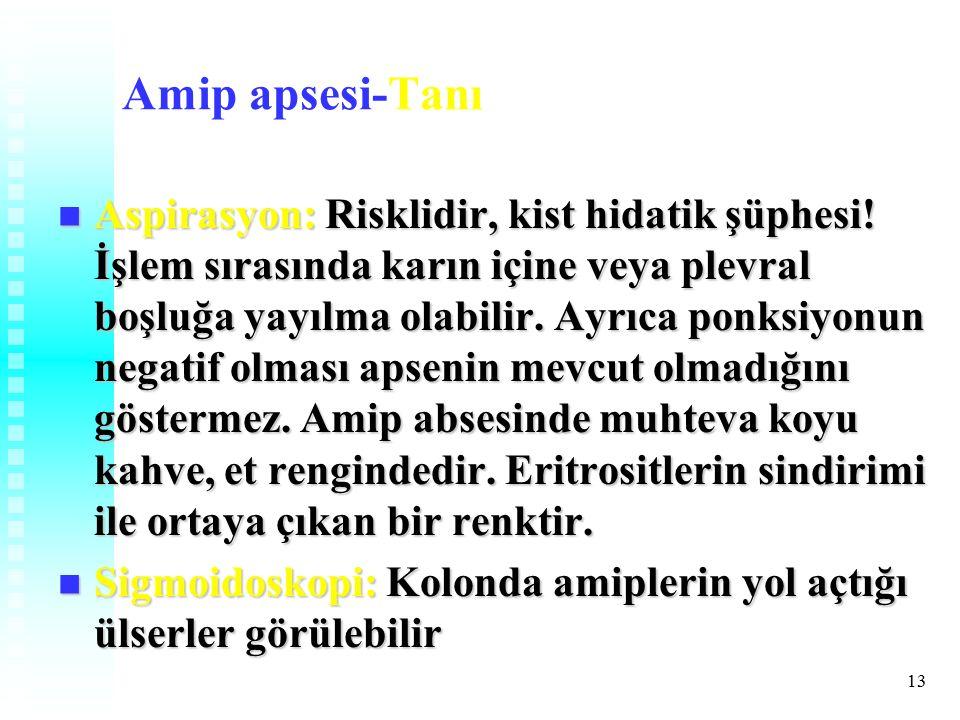 13 Amip apsesi-Tanı Aspirasyon: Risklidir, kist hidatik şüphesi.