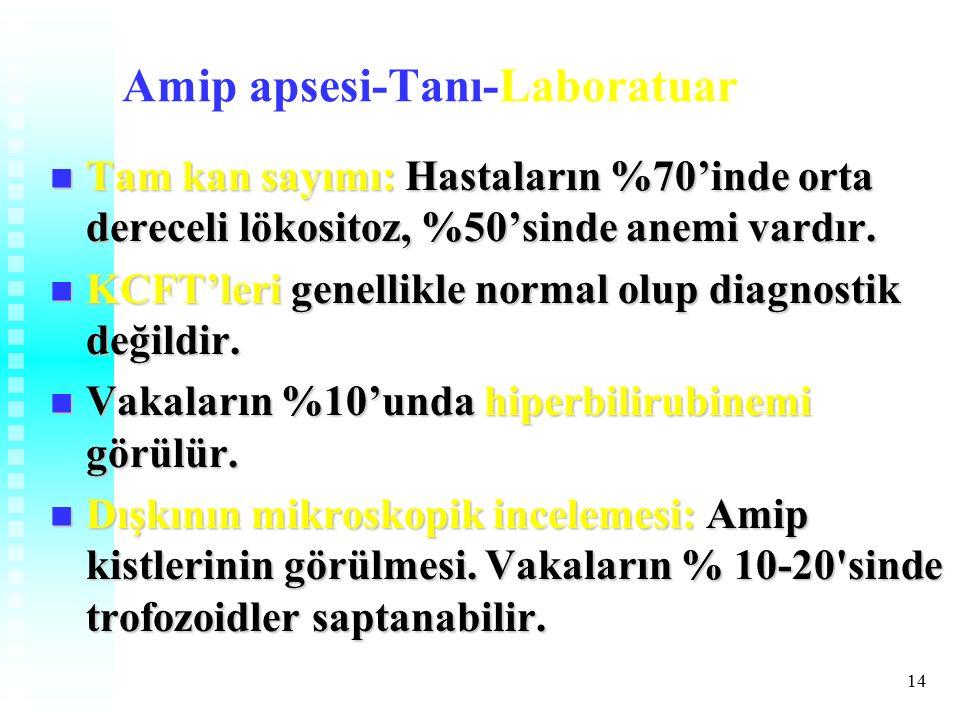14 Amip apsesi-Tanı-Laboratuar Tam kan sayımı: Hastaların %70'inde orta dereceli lökositoz, %50'sinde anemi vardır.