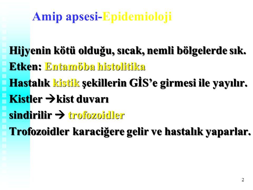 2 Amip apsesi-Epidemioloji Hijyenin kötü olduğu, sıcak, nemli bölgelerde sık.