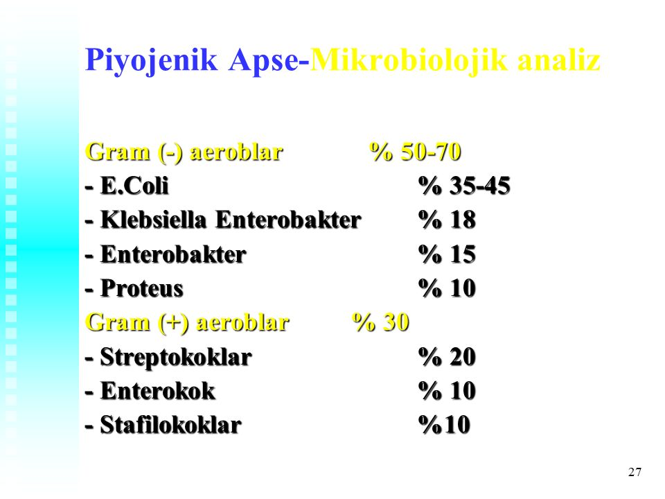 27 Piyojenik Apse-Mikrobiolojik analiz Gram (-) aeroblar % 50-70 - E.Coli% 35-45 - Klebsiella Enterobakter% 18 - Enterobakter% 15 - Proteus% 10 Gram (+) aeroblar % 30 - Streptokoklar % 20 - Enterokok % 10 - Stafilokoklar%10