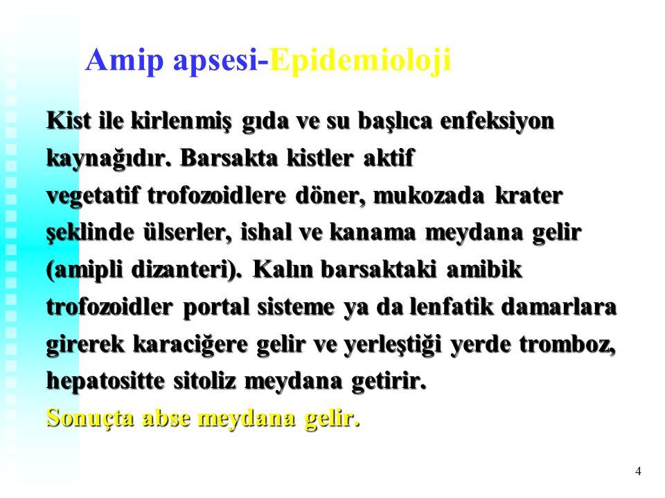 4 Amip apsesi-Epidemioloji Kist ile kirlenmiş gıda ve su başlıca enfeksiyon kaynağıdır.