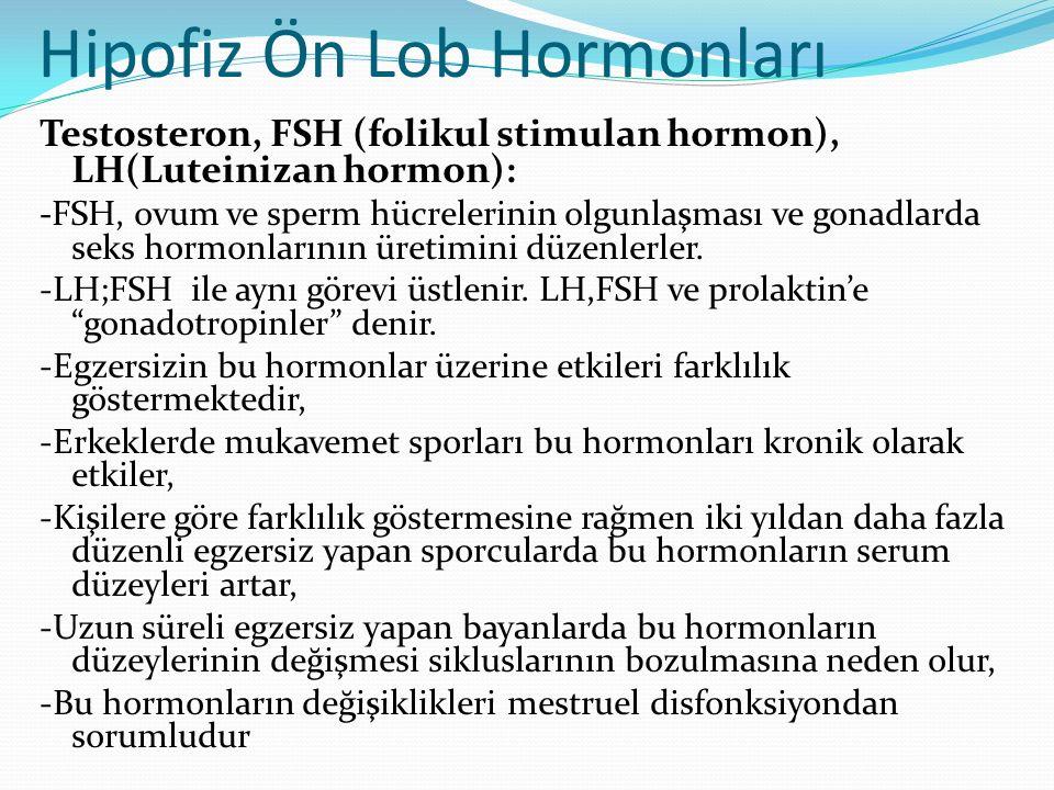 Hipofiz Ön Lob Hormonları Testosteron, FSH (folikul stimulan hormon), LH(Luteinizan hormon): -FSH, ovum ve sperm hücrelerinin olgunlaşması ve gonadlar