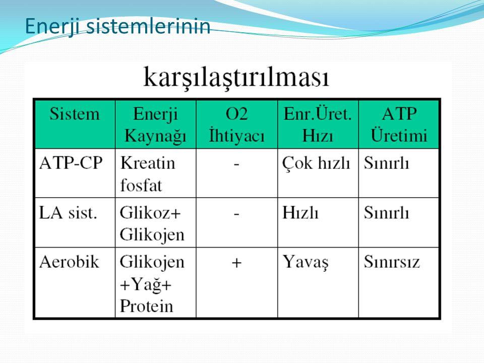 Enerji sistemlerinin