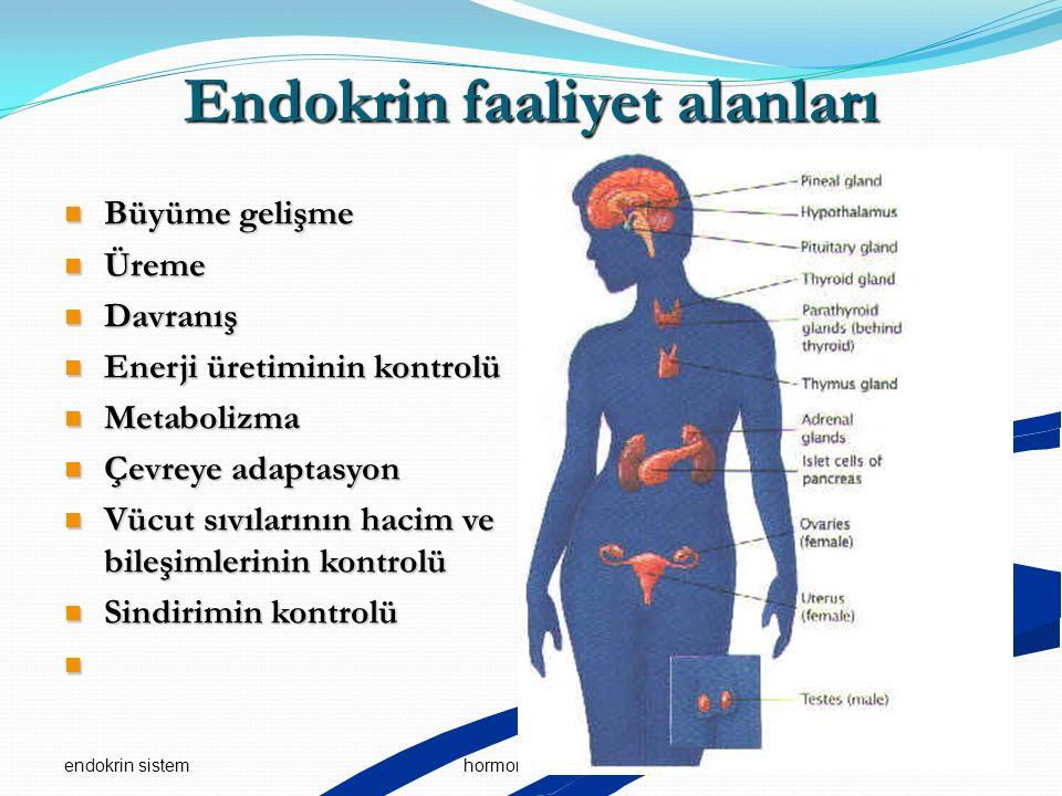 endokrin sistem 5hormonal iletişim Endokrin faaliyet alanları Büyüme gelişme Büyüme gelişme Üreme Üreme Davranış Davranış Enerji üretiminin kontrolü E