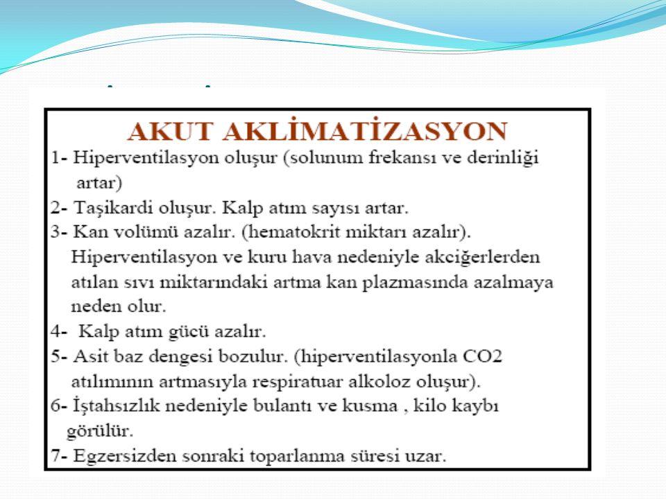 AKLİMATİZASYON