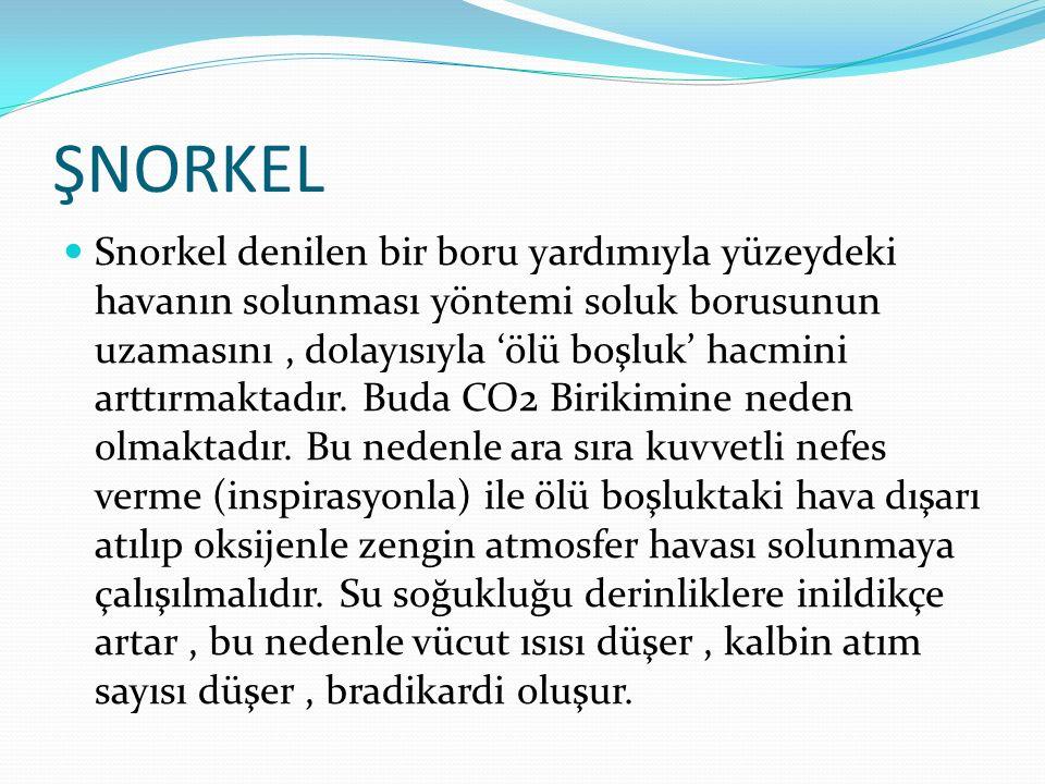 ŞNORKEL Snorkel denilen bir boru yardımıyla yüzeydeki havanın solunması yöntemi soluk borusunun uzamasını, dolayısıyla 'ölü boşluk' hacmini arttırmakt