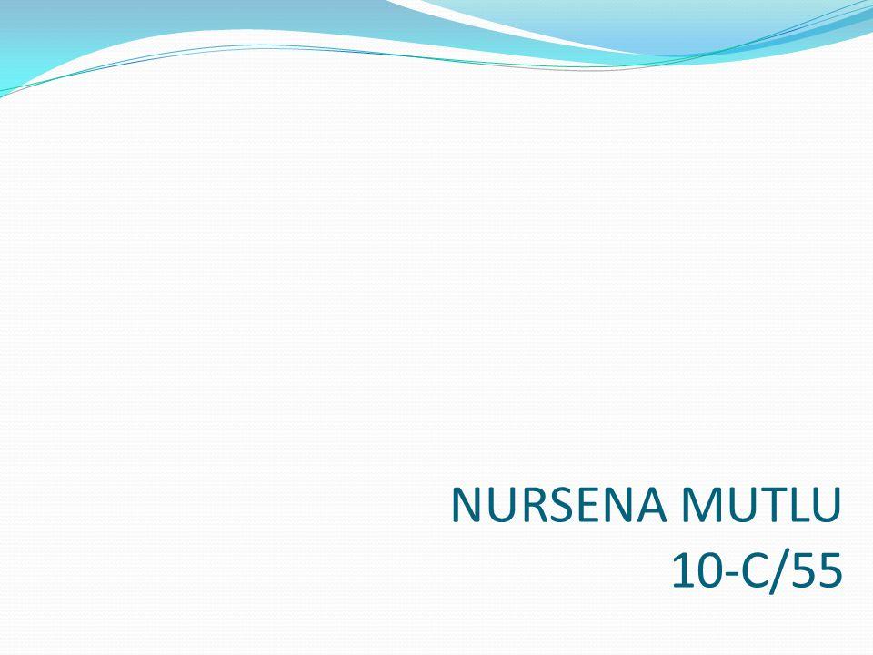 NURSENA MUTLU 10-C/55