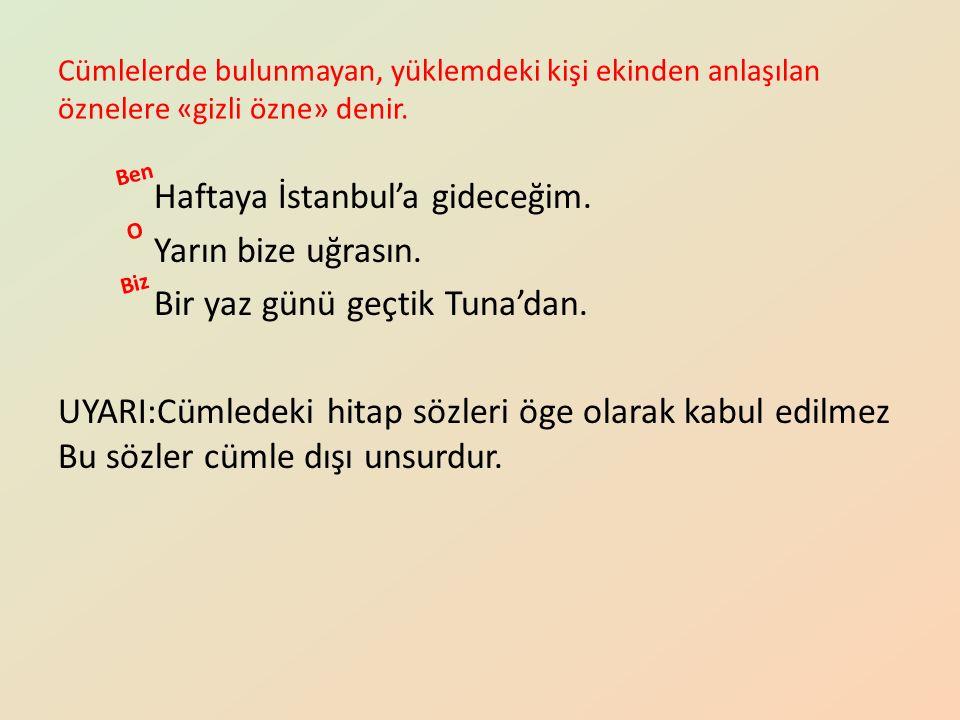 Cümlelerde bulunmayan, yüklemdeki kişi ekinden anlaşılan öznelere «gizli özne» denir. Haftaya İstanbul'a gideceğim. Yarın bize uğrasın. Bir yaz günü g