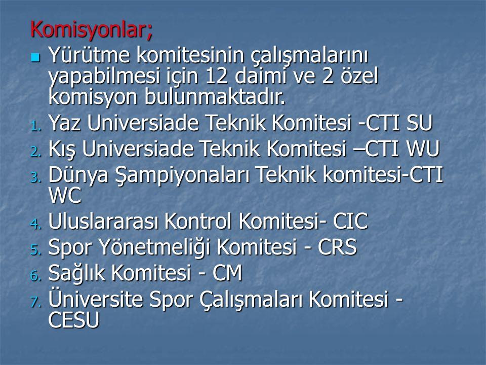 Komisyonlar; Yürütme komitesinin çalışmalarını yapabilmesi için 12 daimi ve 2 özel komisyon bulunmaktadır. Yürütme komitesinin çalışmalarını yapabilme