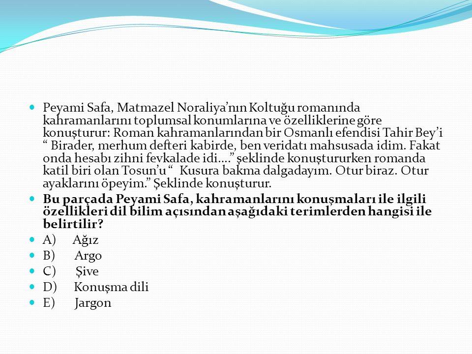 Peyami Safa, Matmazel Noraliya'nın Koltuğu romanında kahramanlarını toplumsal konumlarına ve özelliklerine göre konuşturur: Roman kahramanlarından bir Osmanlı efendisi Tahir Bey'i Birader, merhum defteri kabirde, ben veridatı mahsusada idim.